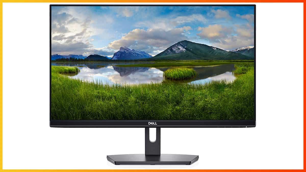 Dell SE2419HX Review